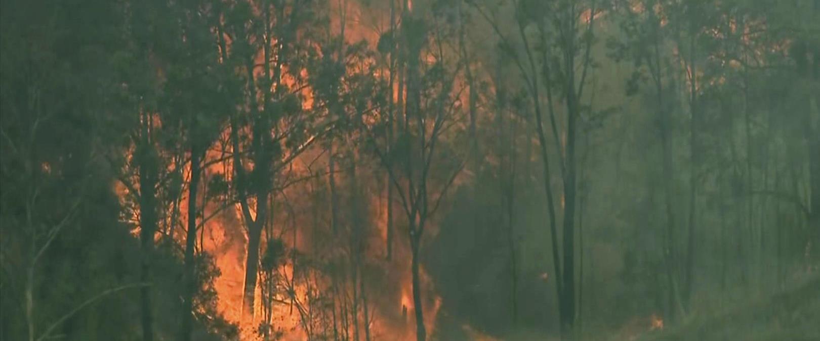 השריפות באוסטרליה