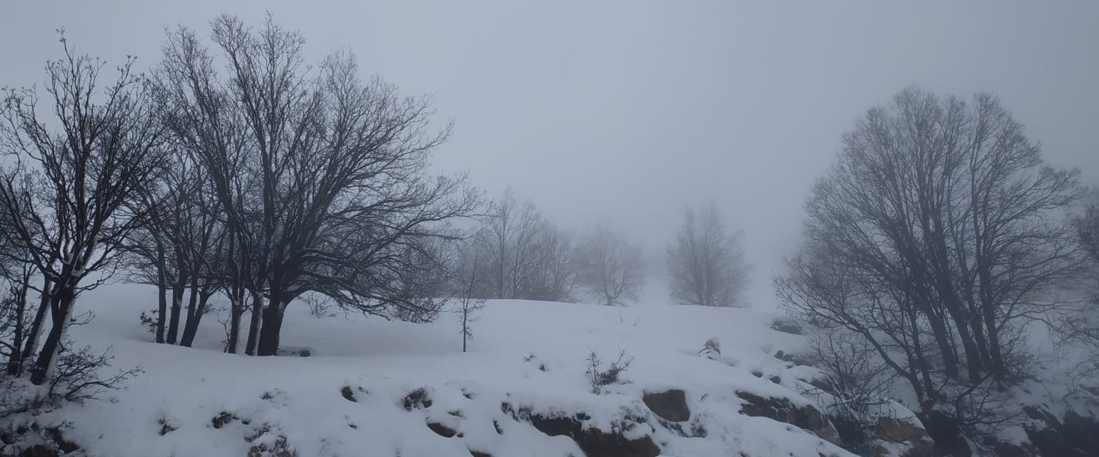 שלג בחרמון, ארכיון