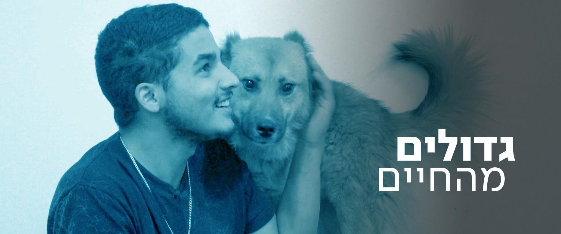גדולים מהחיים: כלבי חברון