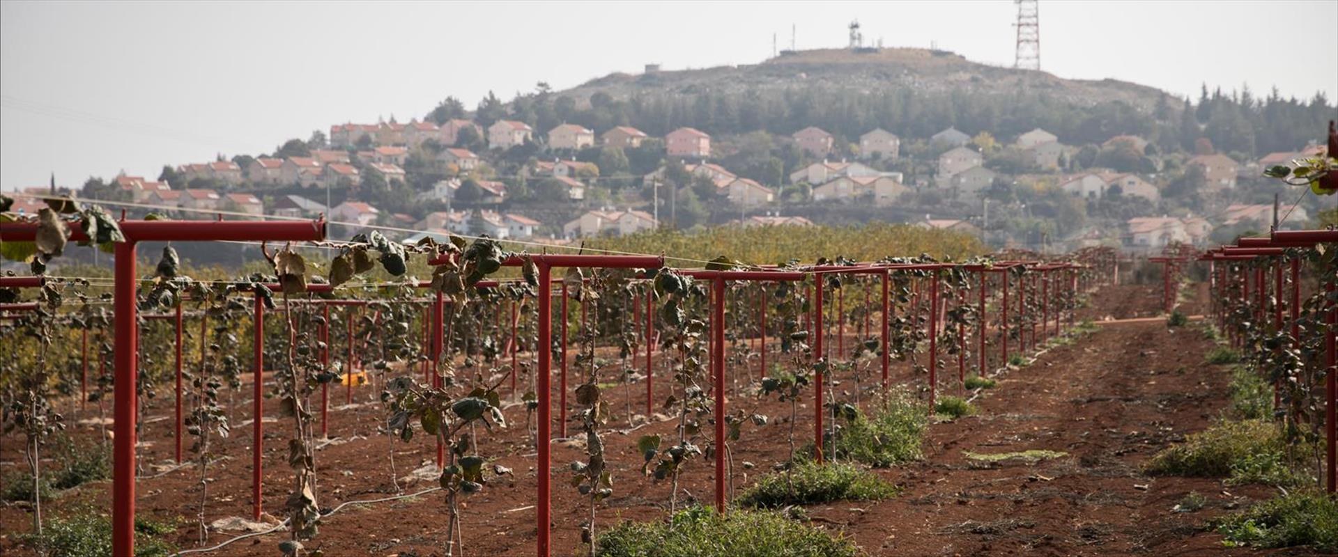 שטח חקלאי בגבול לבנון, ארכיון
