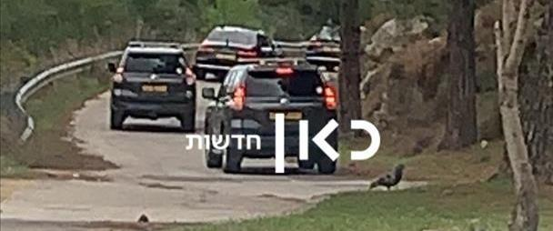 נתניהו ופמלייתו ביער ירושלים