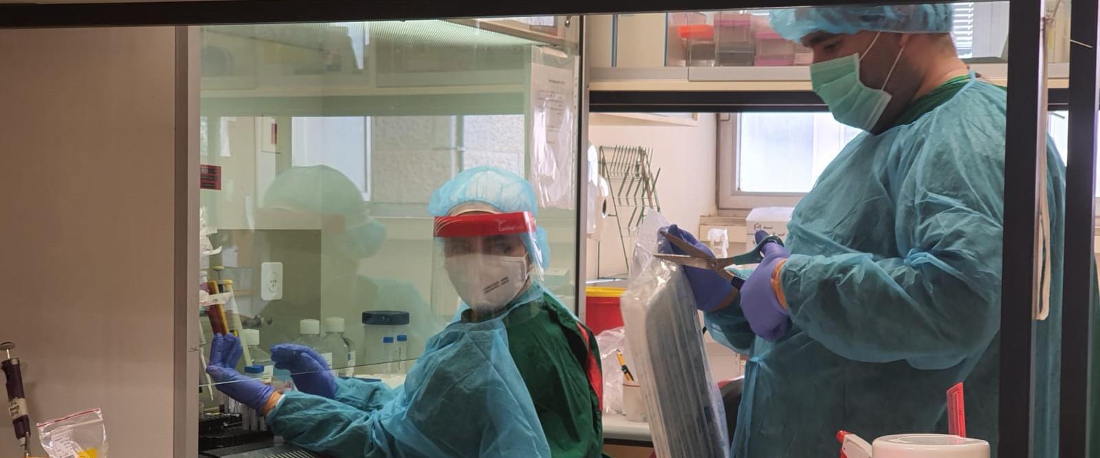 מחקר רפואי בנושא קורונה בבית החולים שערי צדק