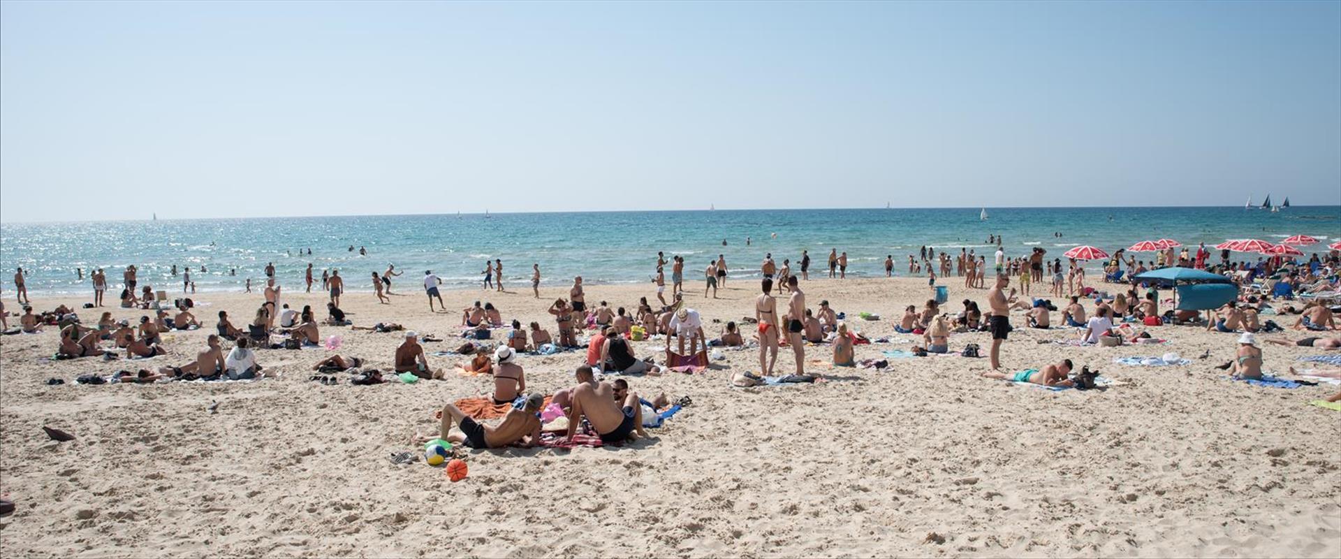 מתרחצים בחוף בת ים