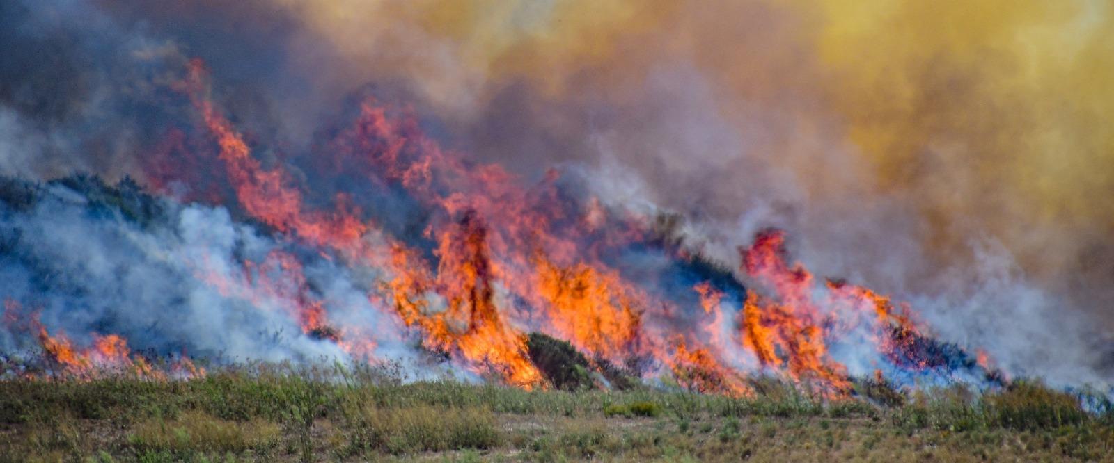 שריפה במועצה אזורית שער הנגב