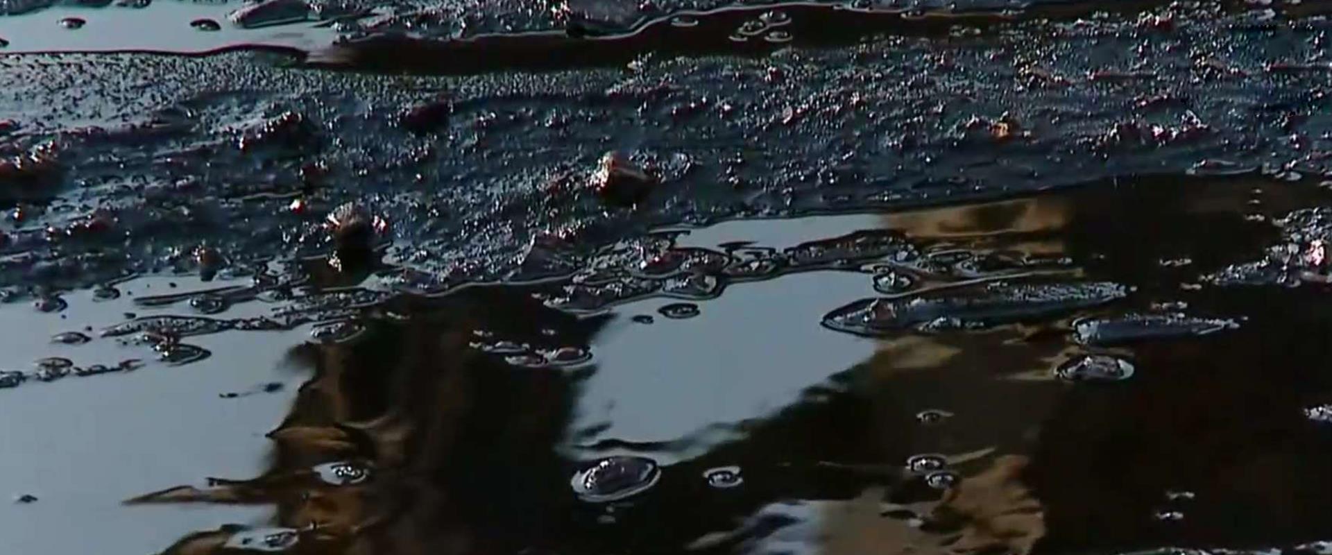 זיהום הזפת בחופים