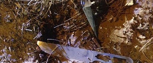 סכין מזירת האירוע