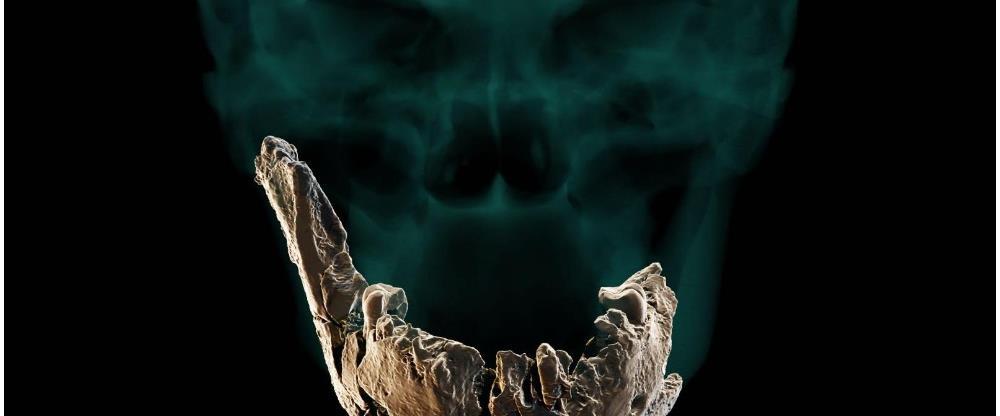עצמות טיפוס אדם נשר רמלה
