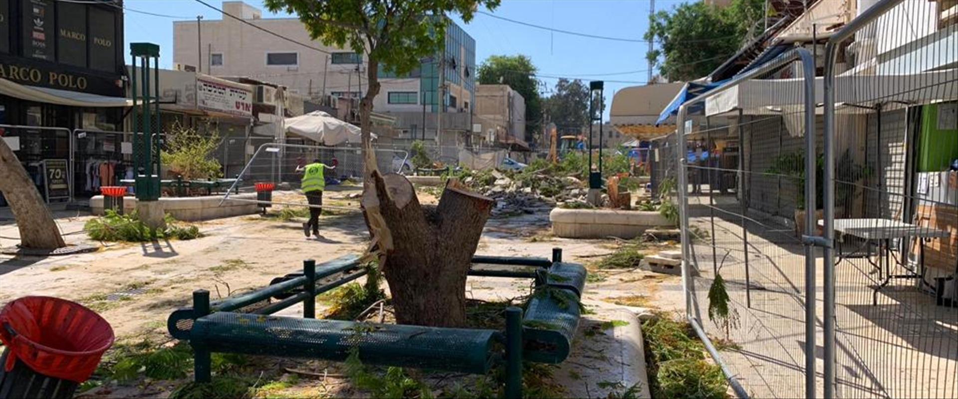 """עצים כרותים ברחוב קק""""ל בבאר שבע"""