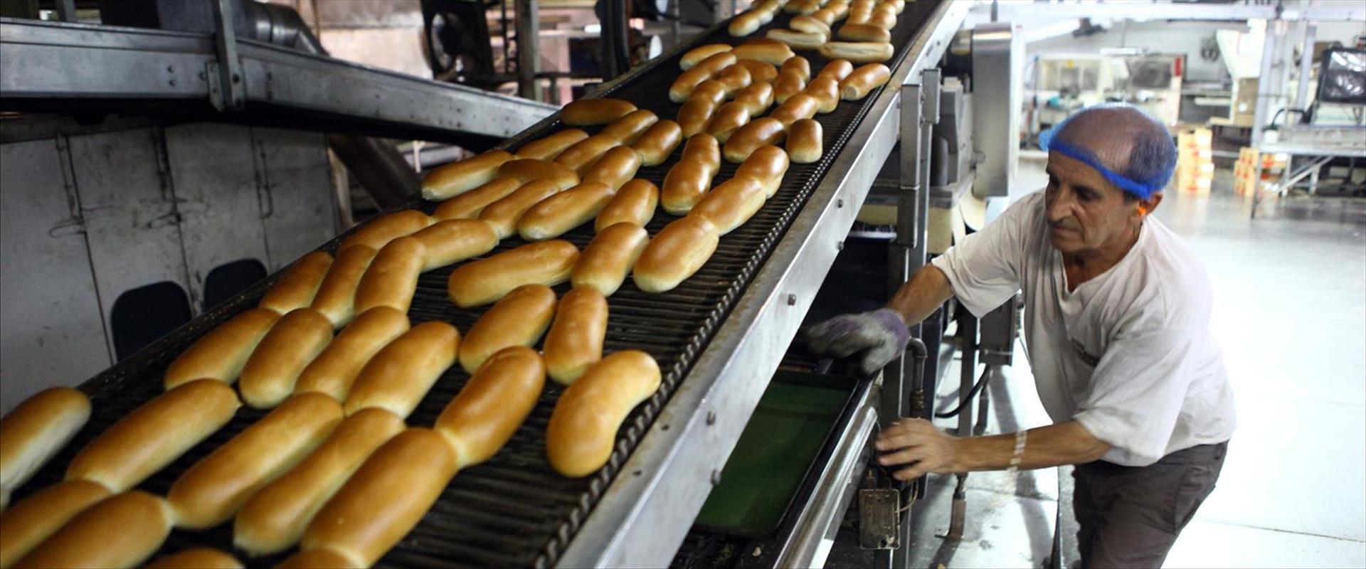 כיכרות לחם