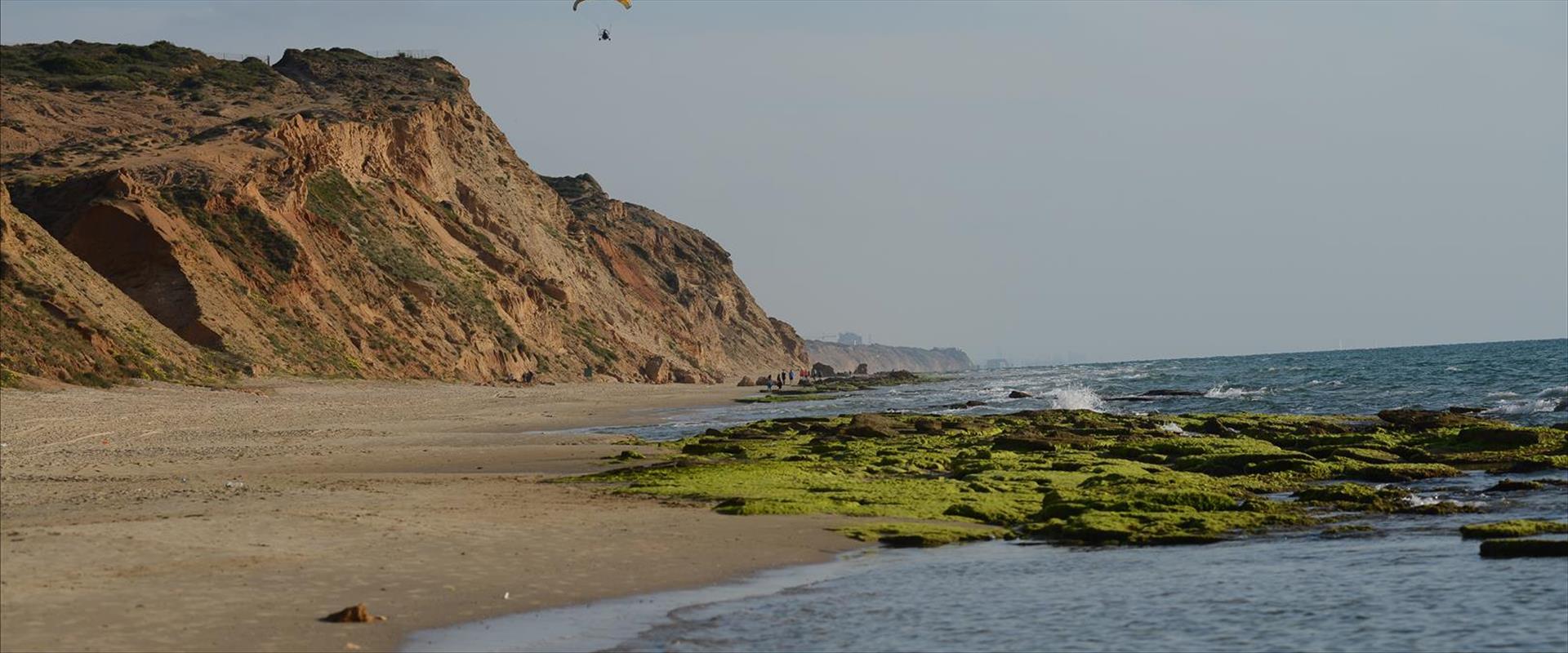 חוף פולג, ארכיון