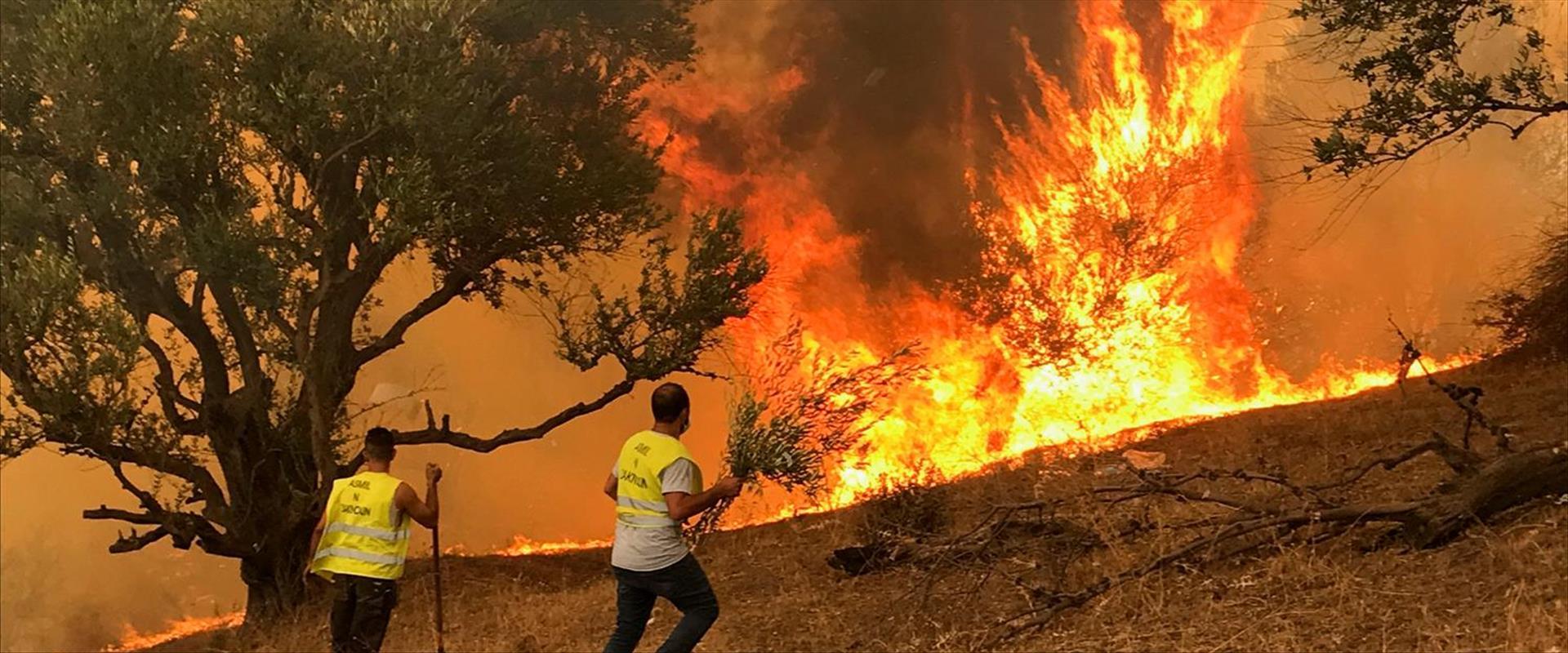 נלחמים באש באלג'ירה