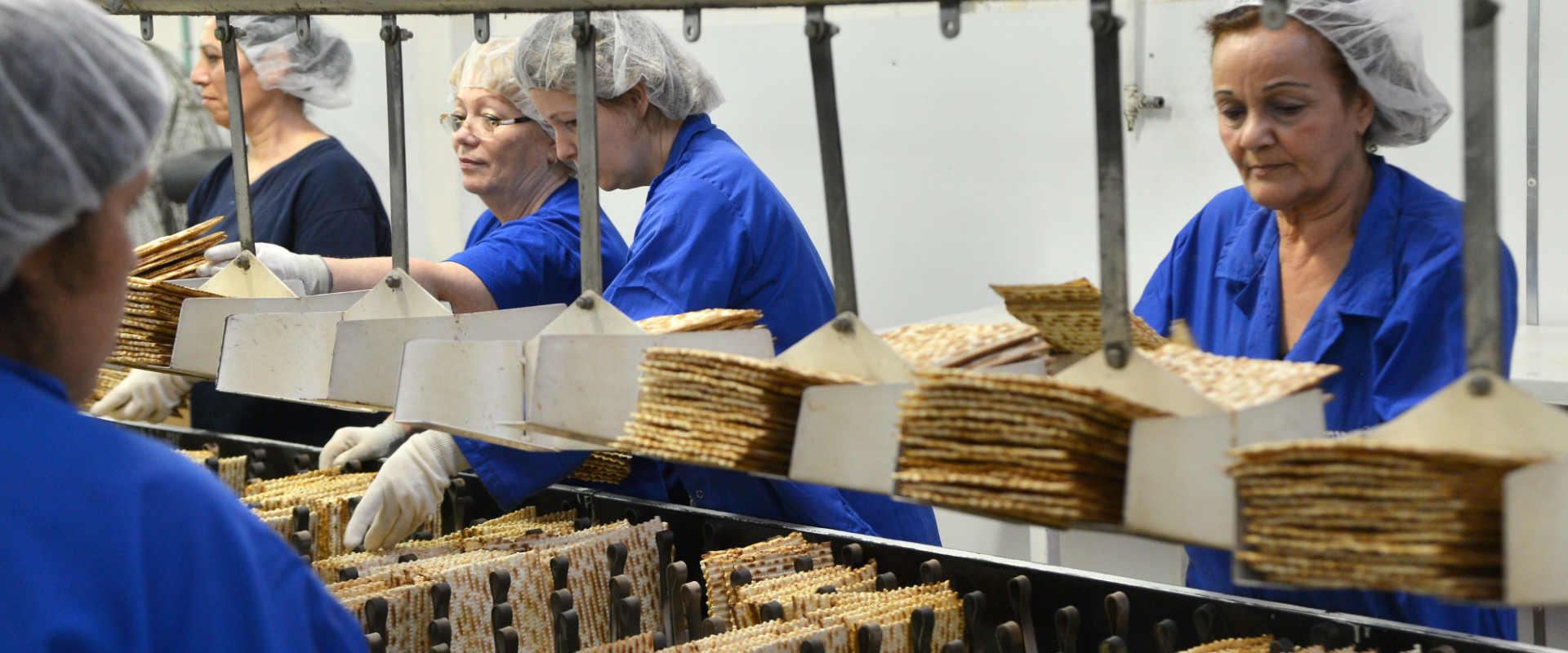 מפעל מצות כרמל בפתח תקוה