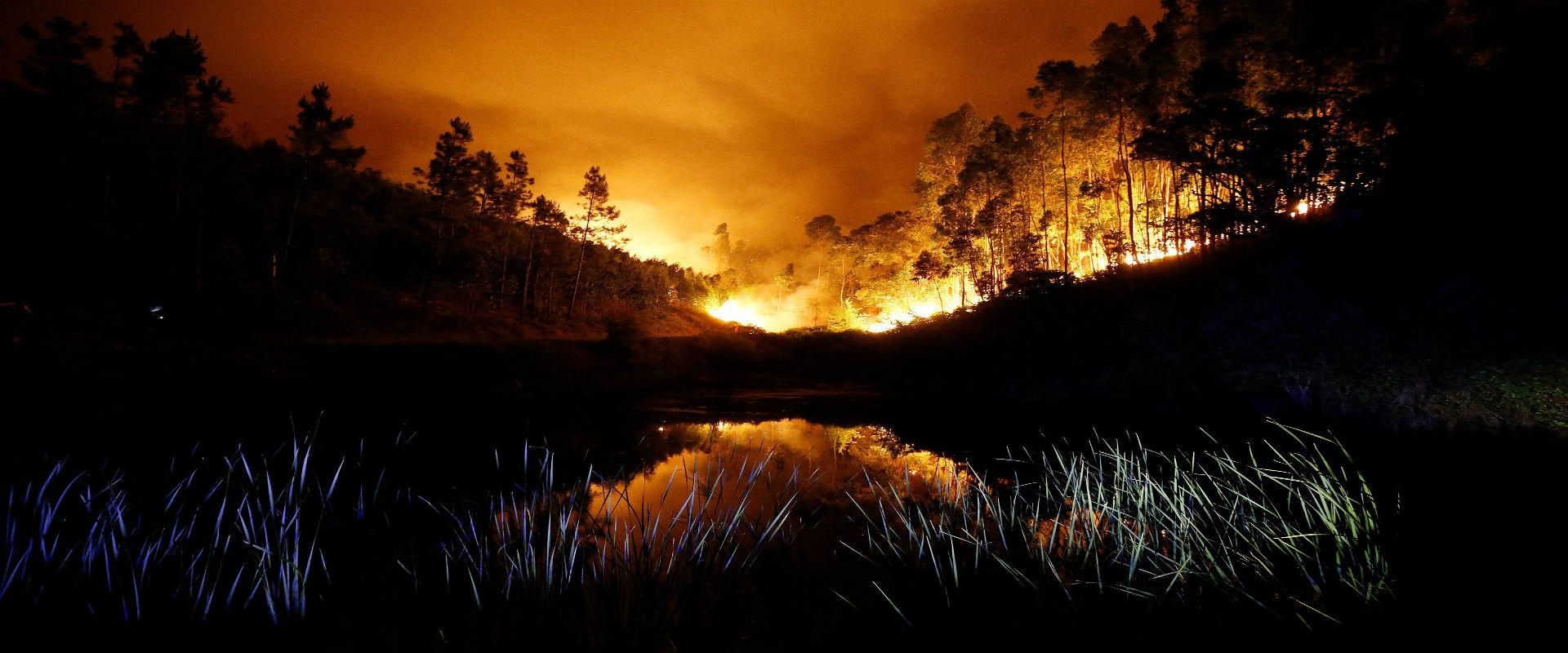 שריפת יער במרכז פורטוגל, היום (צילום: רויטרס)
