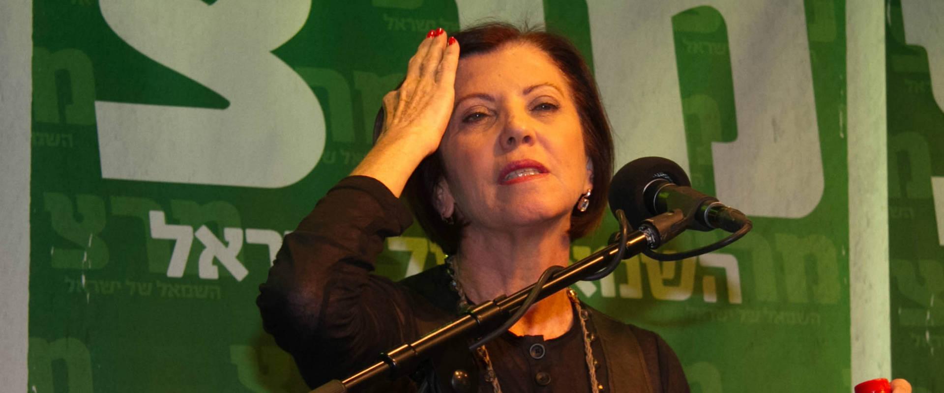 זהבה גלאון, ארכיון